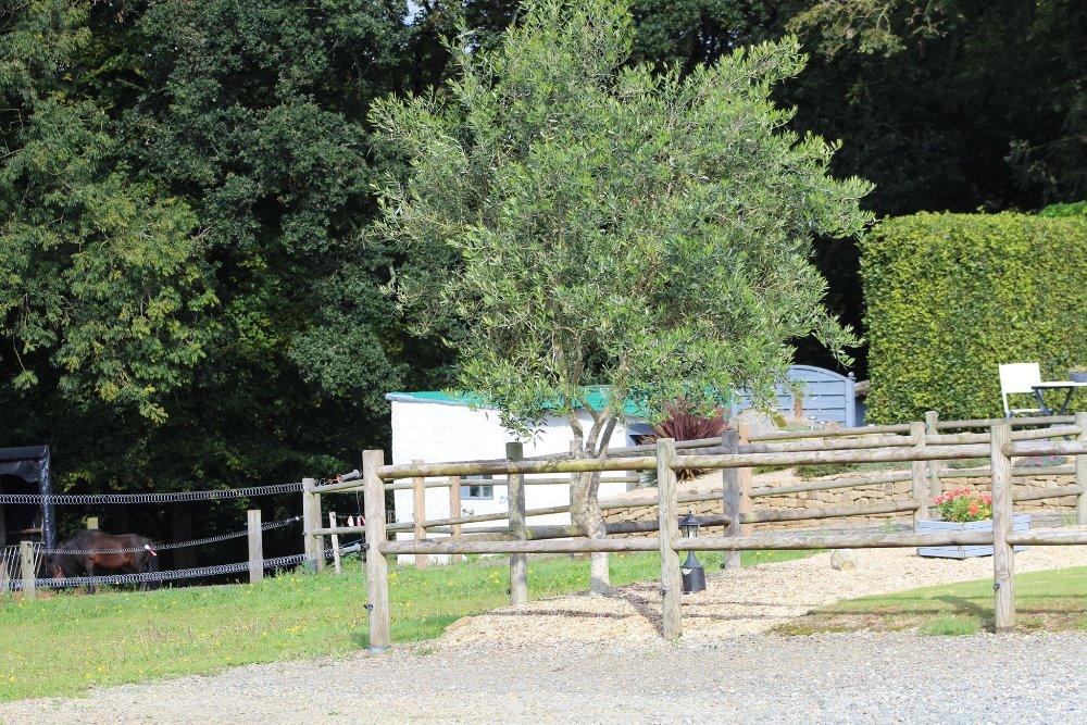 Aire camping-car à Lanvellec (22420) - Photo 4